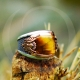 Curved Tiger Eye Stone Sterling Silver Mens Ring-OTTASILVER